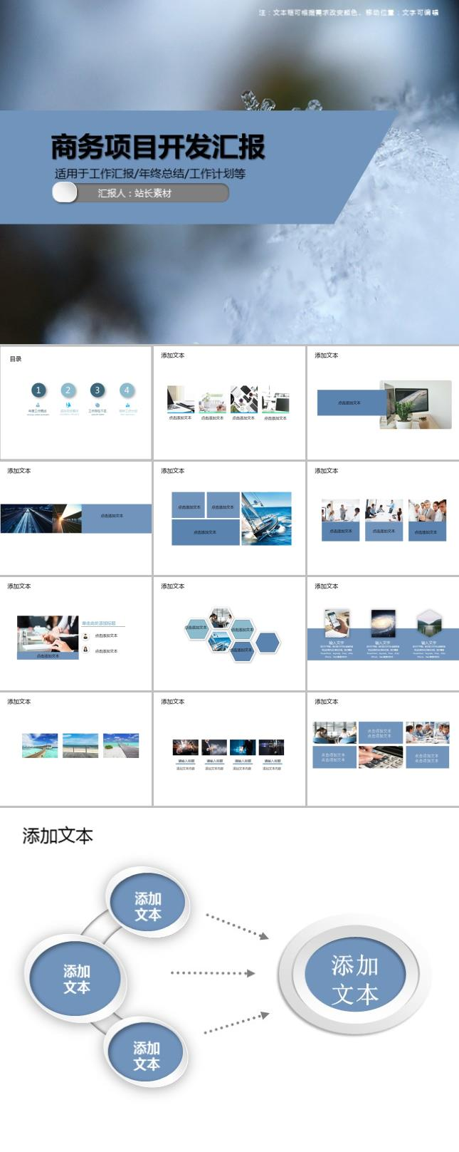 商务项目开发汇报PPT模板