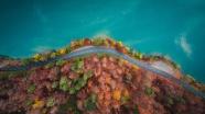 秋季環海公路風景圖片