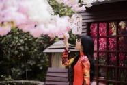站在櫻花樹下的美女圖片