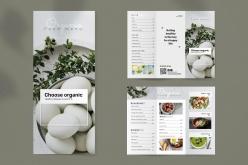 有機食品手冊模板PSD